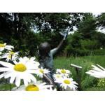 http://www.nhkidventures.com/wp-content/uploads/2014/03/kirkwood-gardens-statue-wpcf_150x150-pad-transparent.jpg